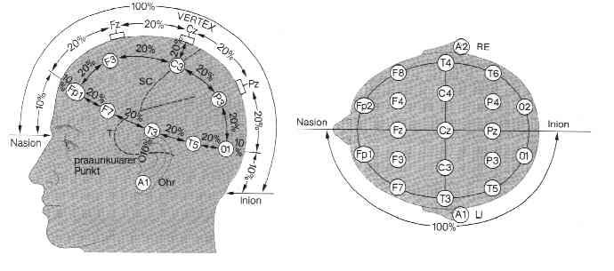 EEG-Schema